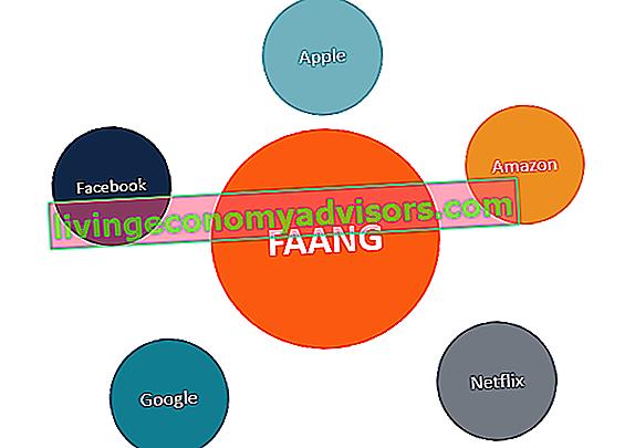¿Qué son las acciones de FAANG?
