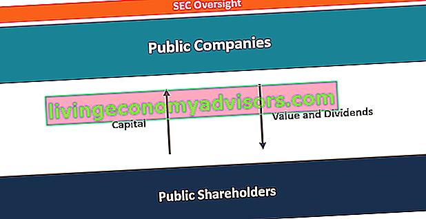 Vad är offentliga företag?