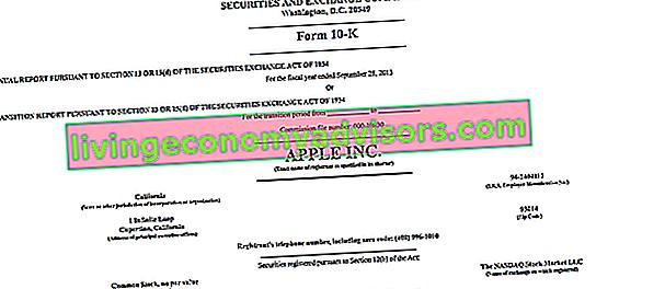Apa Jenis Utama Pengarsipan SEC?