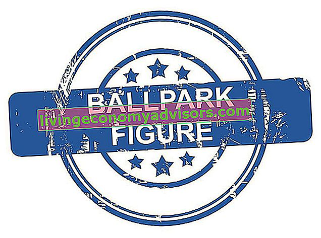 Vad är en Ballpark-figur?