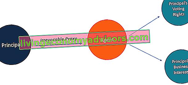 ¿Qué es un proxy irrevocable?