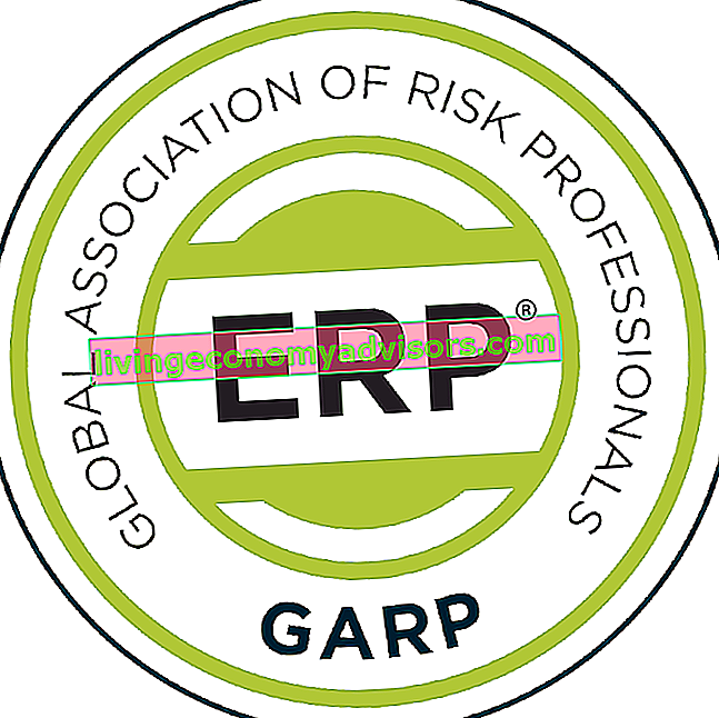 Energy Risk Professional (ERP®)