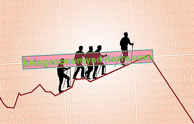 ¿Qué es el rendimiento del accionista?