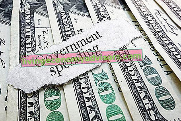 Que sont les dépenses publiques?