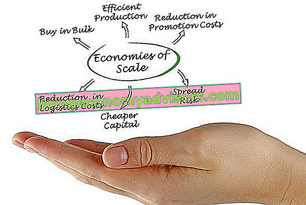 Economies of Scale Theme Finance